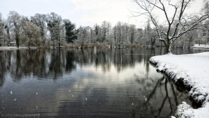 winter_1195