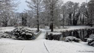 winter_1199