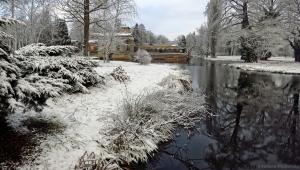 winter_1202