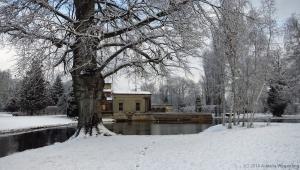 winter_1215