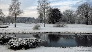 winter_1216