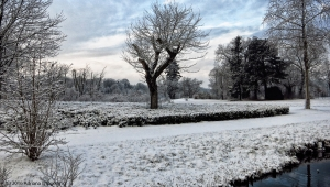 winter_1219