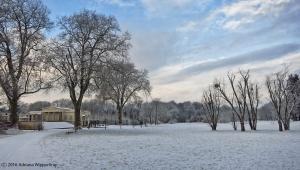 winter_1223
