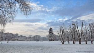 winter_1226