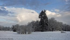 winter_1234
