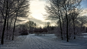 winter_1240