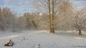 winter_1277