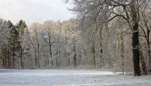 winter_1283