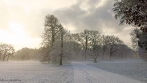 winter_1300