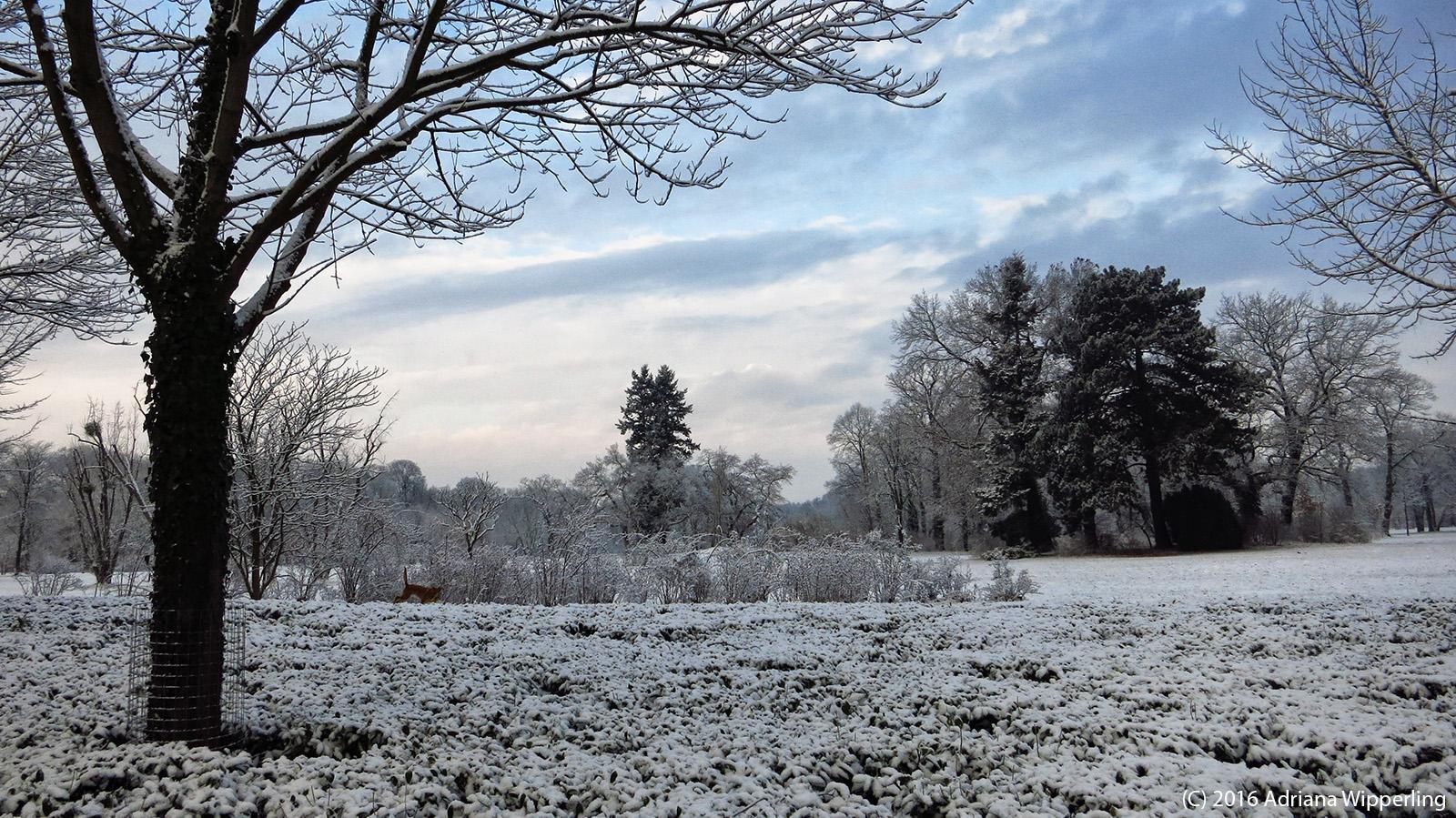 winter_1221