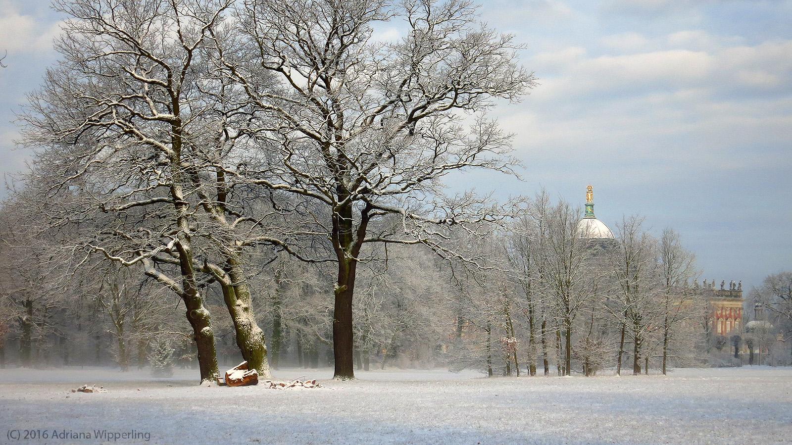 winter_1248