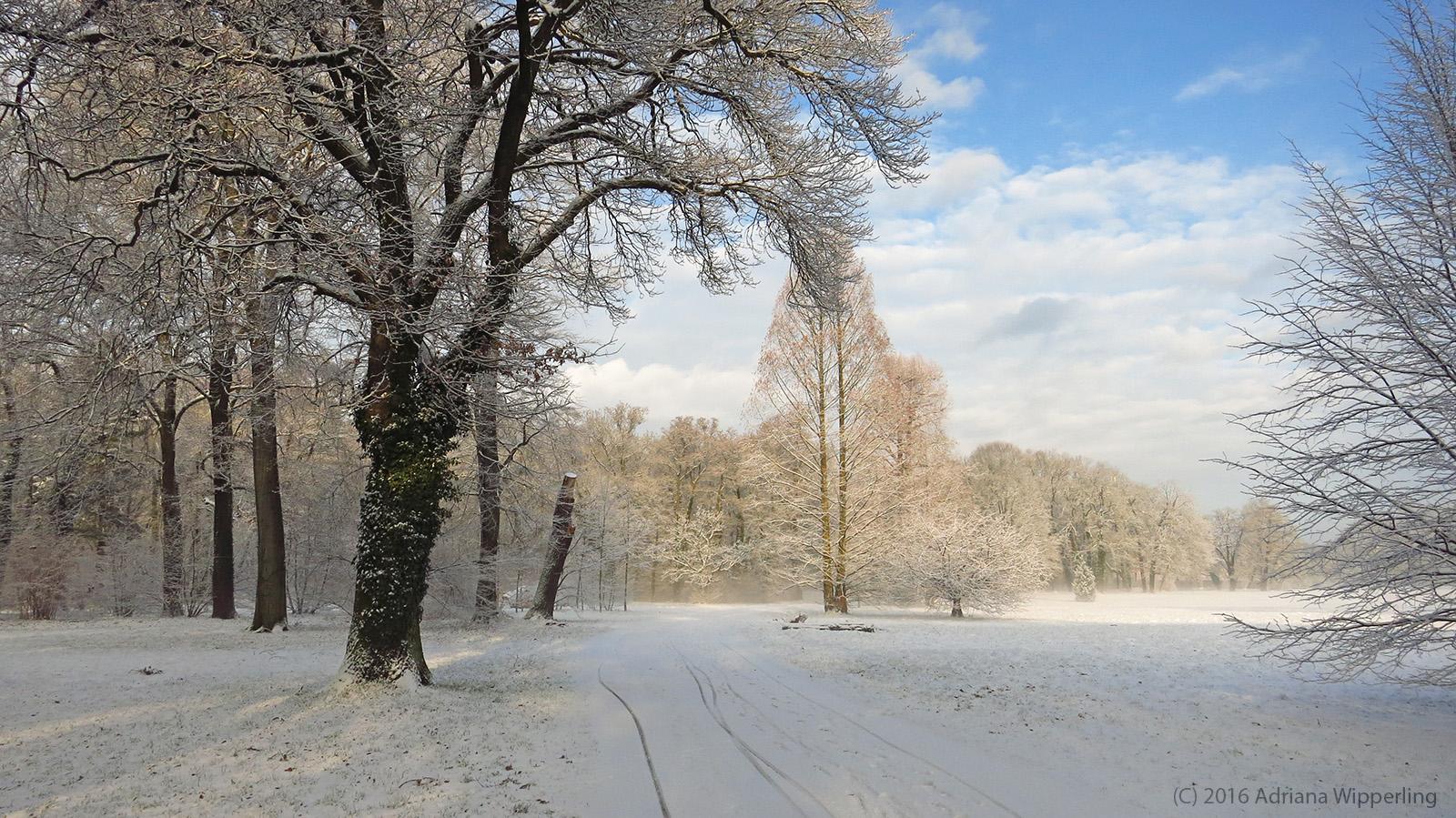 winter_1256
