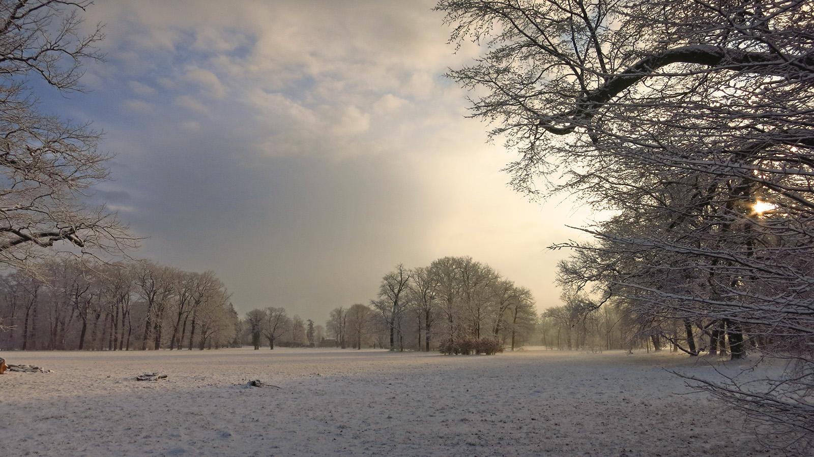 winter_1265