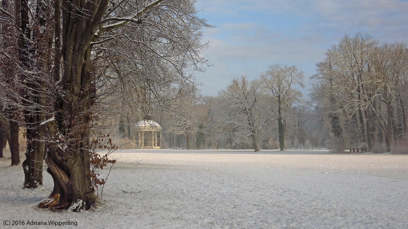 winter_1304