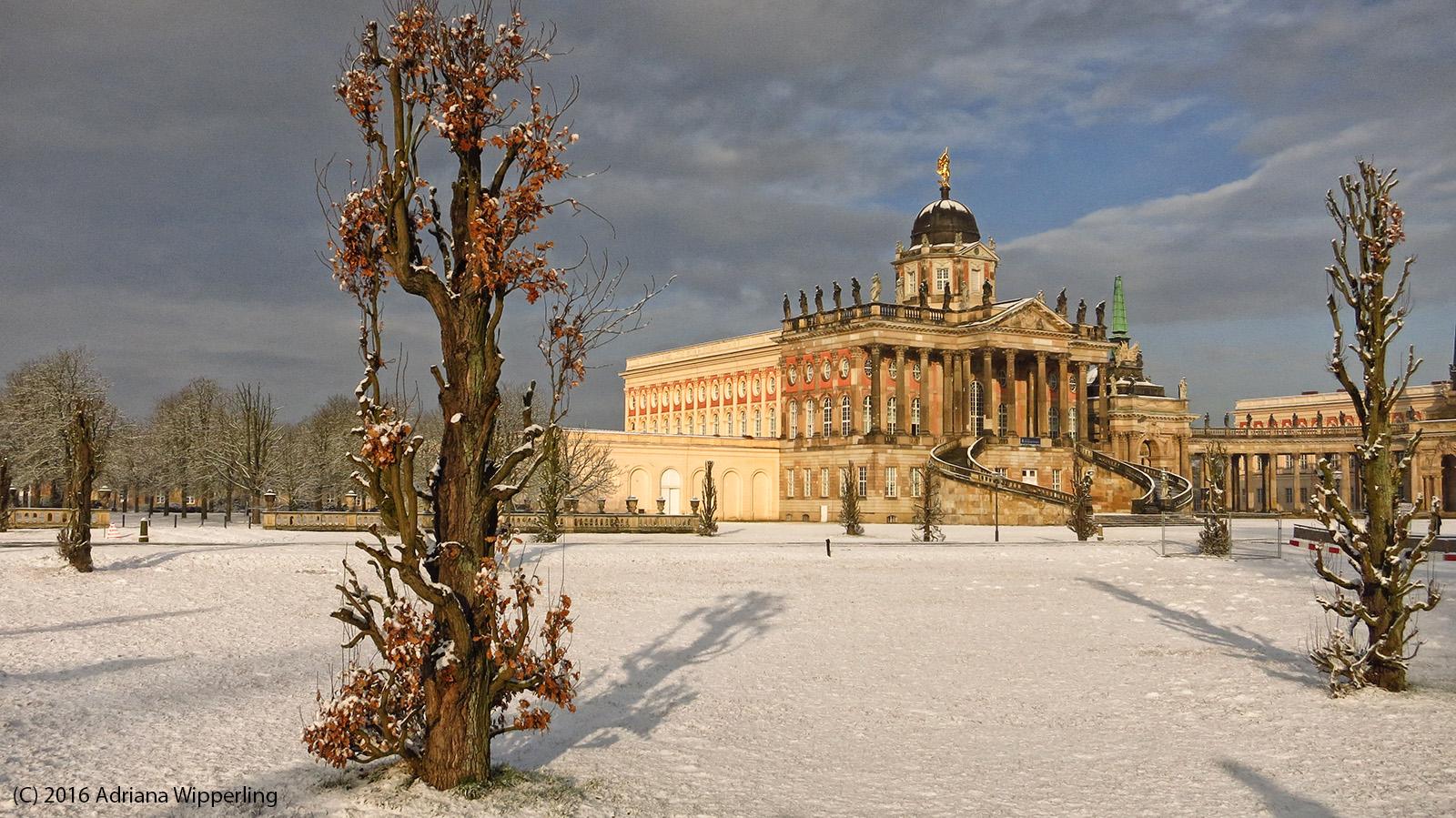 winter_1317